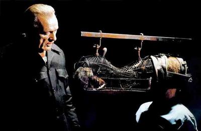 1984 ratas tortura
