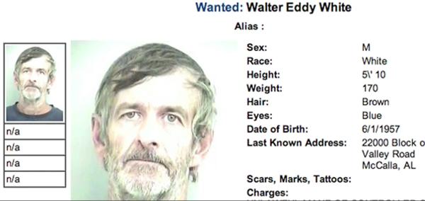 El Verdadero Walter White