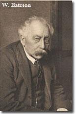 W. Bateson