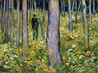 Vincent Van Gogh ve los colores y se los cuenta a su hermano