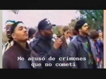 Panteras Negras Qué y Quiénes fueron [Y SON]