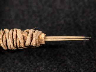 descubrimiento arqueológico: utensilio destinado al tatuaje